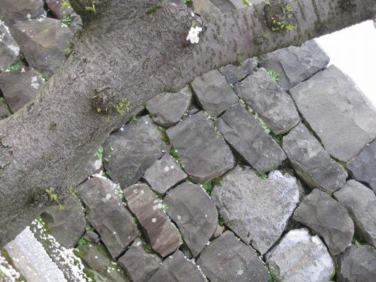 ハート石.jpg