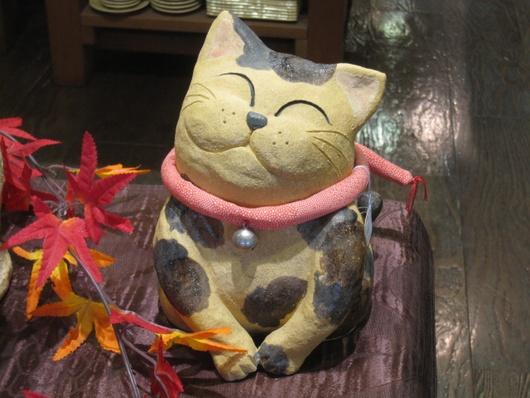 三毛猫.jpg