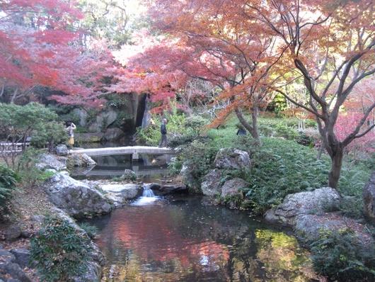 池周辺.jpg