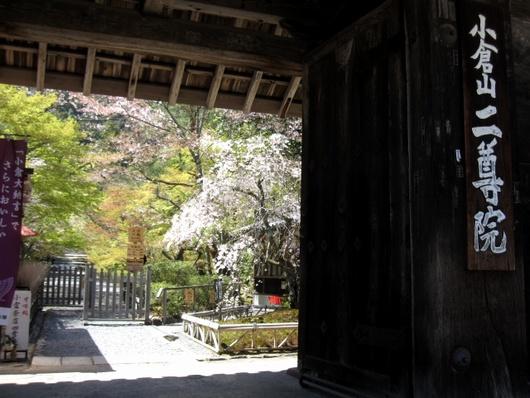 二尊院総門.jpg