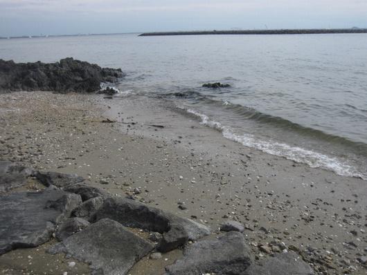 岩場と波.jpg