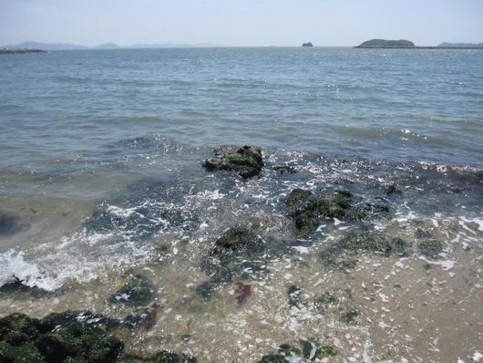 岩場の波.jpg