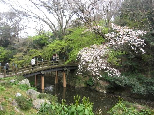 庭園神橋.jpg